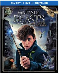 FANTASTIC BEASTS AND WHERE TO FIND THEM on Blu-ray!