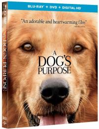 A DOG'S PURPOSE on Blu-ray!