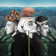 Digital Download of WHAT IS LOVE from CLEAN BANDIT!
