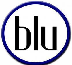 Black Lesbians United (BLU)