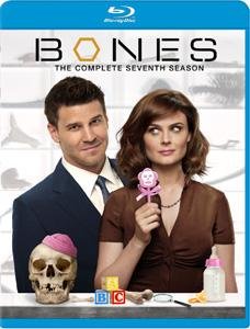Bones - The Complete Season Seven