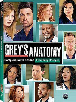 Grey's Anatomy-The Complete Ninth Season
