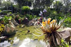 In this Saturday, April 29, 2017, file photo, landscaping consisting of real Earth plant species mixed with sculpted Pandora flora surrounds a pond at the Pandora-World of Avatar land attraction in Disney's Animal Kingdom theme park at Walt Disney World in Lake Buena Vista, Fla.