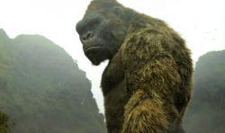 "A scene from, ""Kong: Skull Island."""