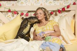 "A scene from ""At Home with Amy Sedaris"""