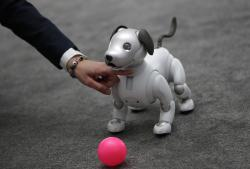 The Aibo robot dog is on display at the Sony booth after a news conference at CES International, Monday, Jan. 8, 2018, in Las Vegas