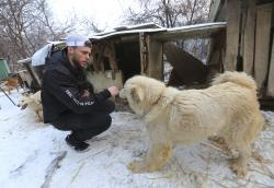 American freestyle skier Gus Kenworthy plays with a dog at a dog meat farm in Siheung, South Korea.