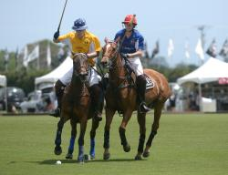 International Gay Polo Tournament: April 6 - 8, 2018
