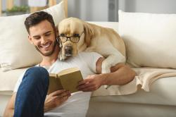 Three out of 10 dog parents have used their dog to attract a potential partner and more than 60 percent said they've been flirted with when walking their pooch.
