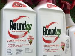 Containers of Roundup, a weed killer made by Monsanto, on a shelf at a hardware store in Los Angeles.