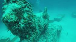 Finding The Afterlife In A Coral Reef Cemetery