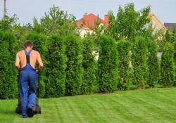 How Competitive Are You About Lawn Care?