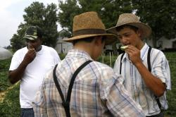 In this June 18, 2018 photo, James Chase, back left, shares slices of melon with sons belonging to an Old Order Mennonite family at the family's farm in New Holland, Pa.