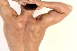 Frequently Asked Questions About Muscle Building