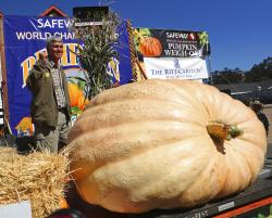 Steve Daletas of Pleasant Hill, Ore., celebrates his first place win in the 45th annual Safeway World Championship Pumpkin Weigh-Off.
