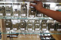 In this Tuesday, Oct. 2, 2018, photo, a clerk reaches for a container of marijuana buds for a customer at Utopia Gardens, a medical marijuana dispensary, in Detroit