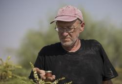 In this Monday, Sept. 17, 2018 photo, Guy Erlich holds a jar of Frankincense honey at his farm near Almog, an Israeli settlement and kibbutz in the Jordan Valley, in the West Bank.