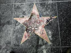 Donald Trump's star on the Hollywood Walk of Fame after it was vandalized in Los Angeles.