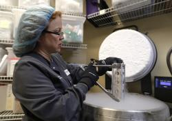 In this Tuesday, Oct. 2, 2018 photo, Kimberly Malm removes a container with frozen embryos and sperm being stored in liquid nitrogen at a fertility clinic in Fort Myers, Fla.