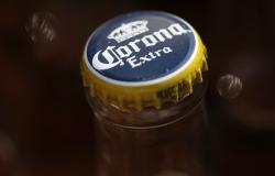 In this April 1, 2010, file photo, Corona beer, a Constellation Brands Inc. product, is seen in Marysville, Pa.