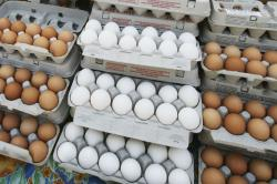 In this May 14, 2008 file photo, cartons of eggs are displayed for sale in the Union Square green market in New York.
