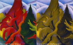 """This composite image shows Georgia O'Keeffe's painting """"Trees in Autumn,"""" as seen with Normal Color Vision, left, and as seen by people with Color Vision Deficiency."""