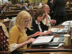 Rep. Andrea Schroeder, R-Independence Township, left, and state Rep. Ann Bollin, R-Brighton Township, work at their desks ahead of a planned House vote on auto insurance legislation on Wednesday, May 8, 2019, in Lansing, Mich.