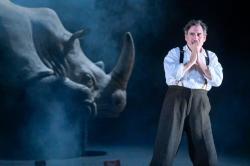 "David Breithbart in ACT's ""Rhinocerous"""