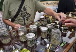 In this June 20, 2019 photo a vendor with Talking Trees Farms a Northern Humboldt County sustainable cannabis farm, offers a taste of their latest crop of crafted marijuana flower to an attendee of WeedCon West 2019 in Los Angeles