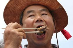 A member of the Korean Dog Meat Association eats dog meat during a rally to support eating the meat in front of the National Assembly in Seoul, South Korea.