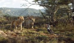 """This image released by Disney shows, from left, young Simba, voiced by JD McCrary, young Nala, voiced by Shahadi Wright Joseph, and Zazu, voiced by John Oliver, in a scene from """"The Lion King."""" (Disney via AP)"""