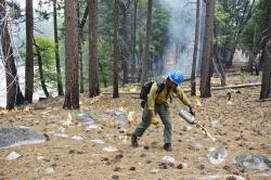 In this June 11, 2019 photo, firefighter Charles VeaVea pours flames from a drip torch near the Kings River during a prescribed fire in Kings Canyon National Park, Calif.