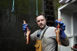 In this picture taken Tuesday, Sept 3, 2019, fisherman and crewman Alan Ferguson holds up freshly caught langoustines in the port of Eyemouth, south coast of Edinburgh, Scotland.