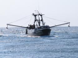 In this Sept. 11, 2019 photo, the commercial fishing boat Ann Kathryn sails into the Manasquan Inlet in Manasquan, N.J.