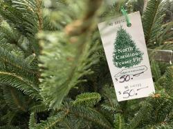 In this Monday, Dec. 9, 2019, photo, a North Carolina fraser fir Christmas tree is for sale in Lenoir, N.C.