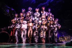 "The cast of the national tour of ""Cats."""