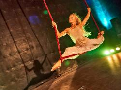 'The Aerialist'