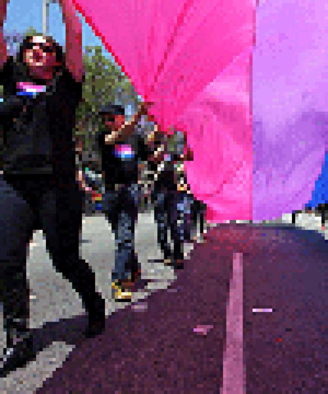AmBi, a bisexual social group, marched in the 2015<br>Sacramento Pride parade. Photo: Courtesy amBi