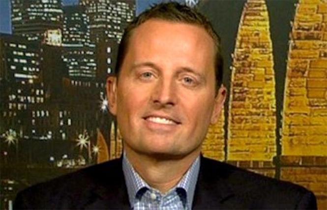 New Ambassador to Germany Richard Grenell