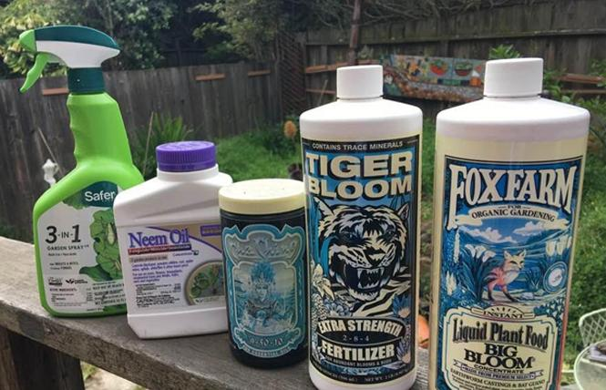 A variety of products can help your outdoor cannabis plants thrive. Photo: Sari Staver