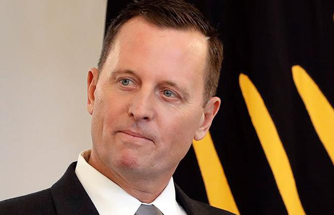 U.S. German Ambassador Richard Grenell. Photo: AP