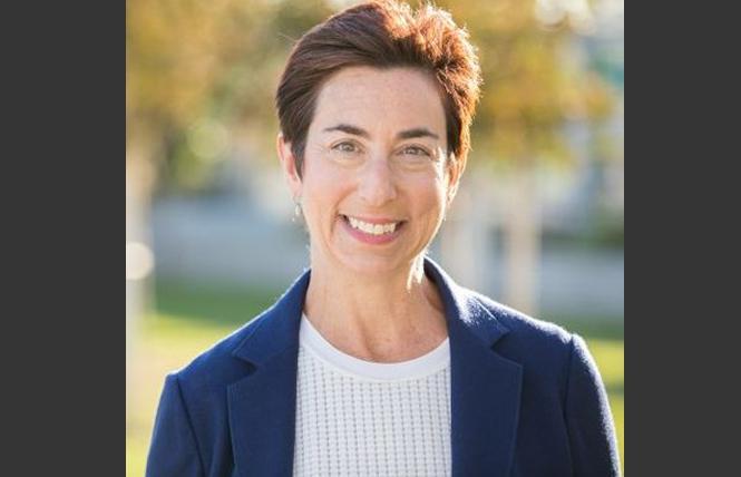 Candidate Susan Ellenberg