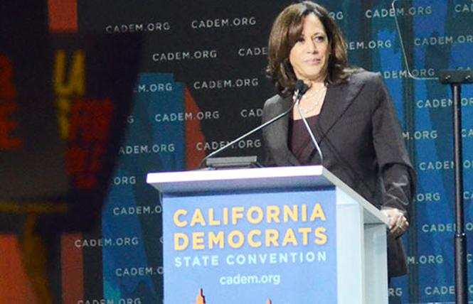 Senator Kamala Harris, a leading Democratic presidential candidate, has introduced a comprehensive marijuana reform bill. Photo: Rick Gerharter