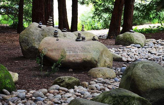 The National AIDS Memorial Grove will be the site of its Light in the Grove gala and its national observance of World AIDS Day. Photo: Rick Gerharter