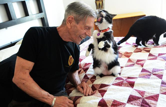 Bill Longen relaxed with his two cats, Darla, 14, and Wheezer, 15, in his apartment in the Marcy Adelman and Jeanette Gurevitch Openhouse Community in this July 2019 photo. Photo: Rick Gerharter