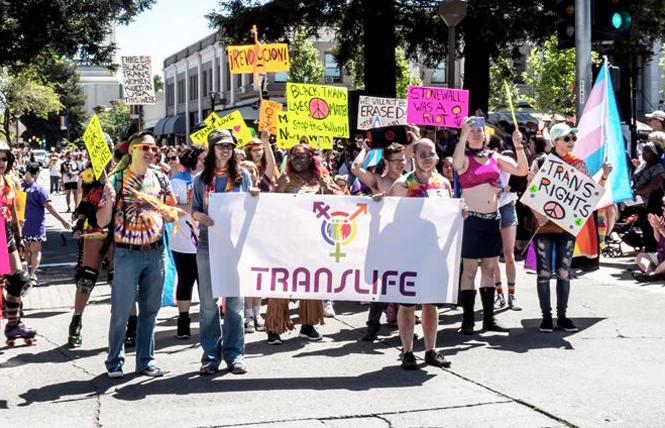 The Translife group marched in last year's Sonoma County Pride parade. Photo: Dale Godfrey