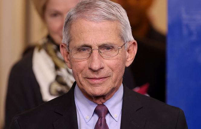 Dr. Anthony Fauci. Photo: Courtesy NBC News