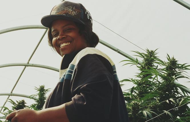 Cannabis entrepreneur Amber Senter. Photo: Anthony Martinez