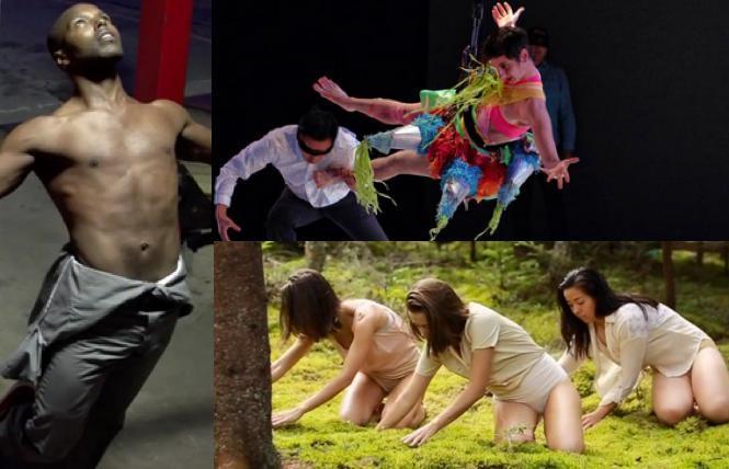(left and lower) Portland Dance Film Festival (upper right) FLACC 2020