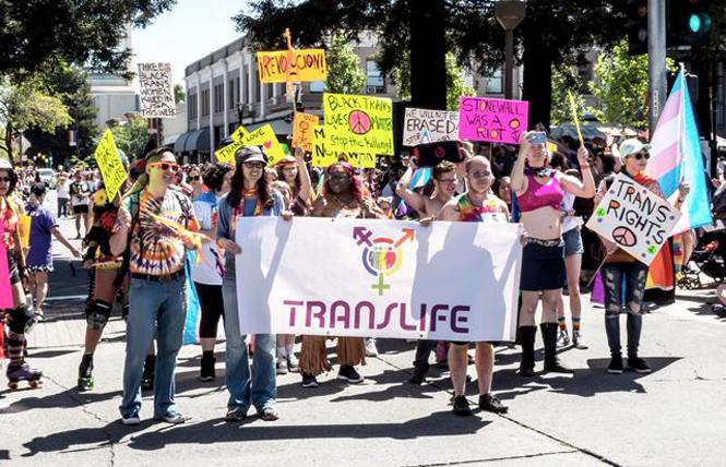 Thousands of people attended the 2019 Sonoma County Pride parade; this year's is switching to a drive-thru format because of the COVID pandemic. Photo: Dale Godfrey